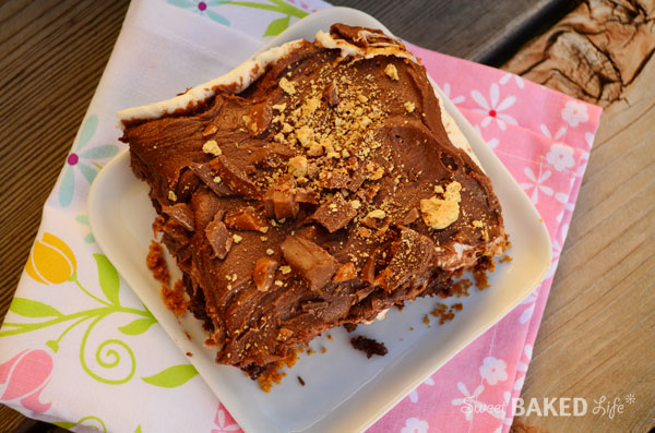 FrostedSmoresBrownies4