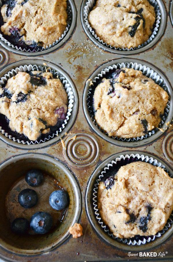 BlueberryBran Muffin