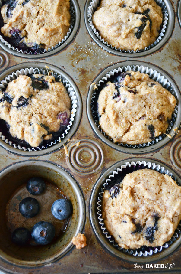 BlueberryBran Muffin