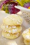 LemonCrinkle-4