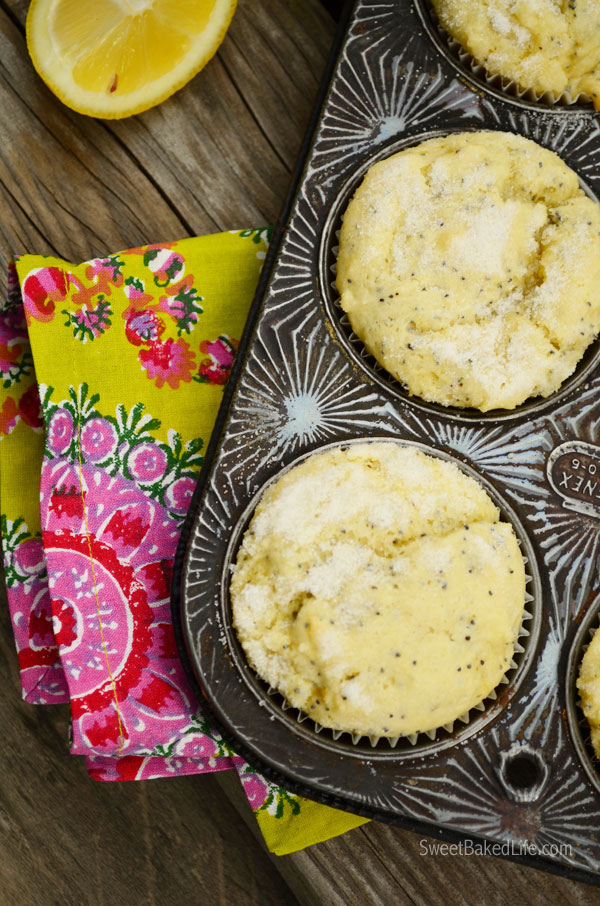 Tangy Lemon Poppy Seed Muffins   Sweet Baked Life