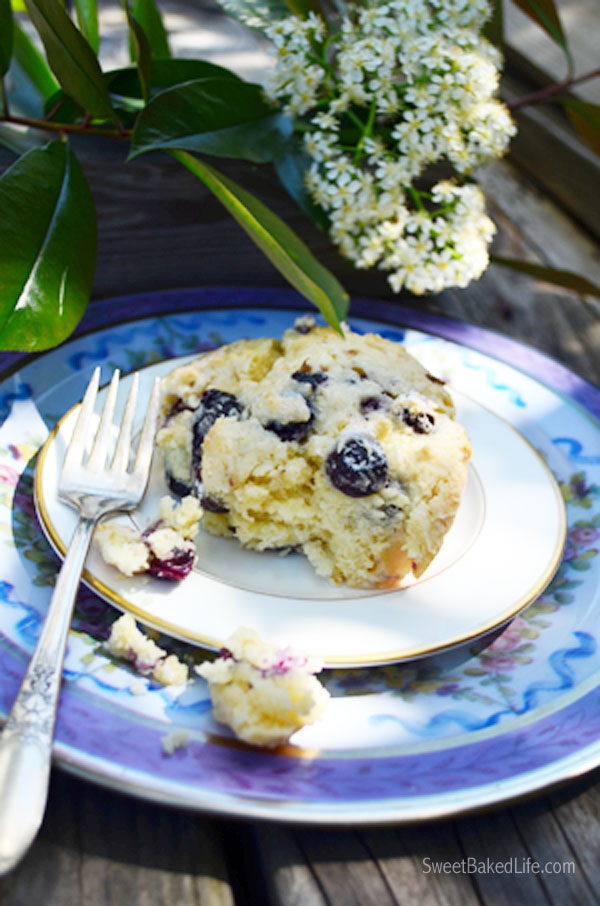 Blueberry Breakfast Cake | Sweet Baked Life