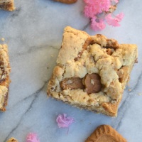 Biscoff Chocolate Chunk Blondies